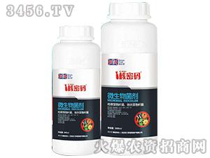 微生物菌剂(瓶装)-核密码-英尔果