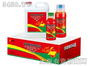 草甘膦异丙胺盐水剂(组合装)-红四方品牌