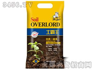 土壤改良剂-土霸王-巴