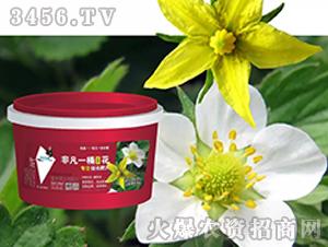 复合微生物肥料-非凡一桶(花)-利果国际