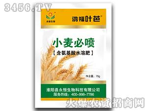 小麦必喷(含氨基酸水溶肥料)-鸿福叶芭-永恒生物