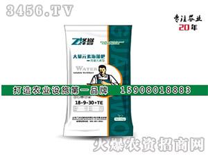 大量元素海藻肥18-9-30+TE-泽誉-广沃生物