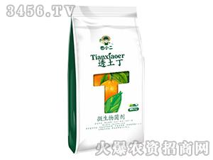 10kg微生物菌剂-透土丁-鼎盛农业