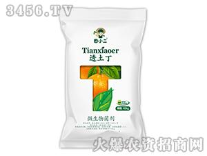 40kg微生物菌剂-透土丁-鼎盛农业