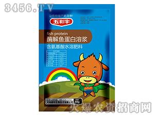 50g含氨基酸水溶肥料-五彩牛-爵利生物