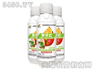 含腐植酸液体肥(瓶装)-肥莱壮-爱农斯达