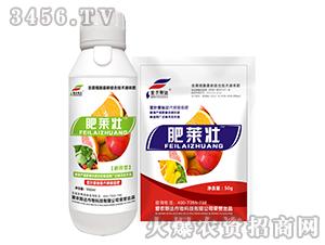 含腐植酸液体肥(套装)-肥莱壮-爱农斯达