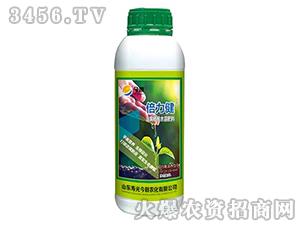 含腐植酸水溶肥料(瓶)-倍力健-寿光今朝