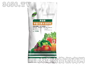 中量元素水溶肥-果蔬丽