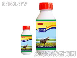 41%草甘膦异丙胺盐水剂-抄干进-赛威生物