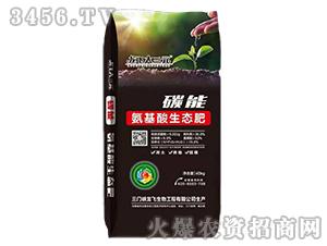 碳能氨基酸生态肥-龙飞大三元-龙飞生物