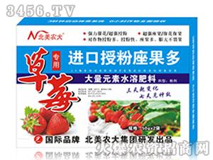 草莓专用进口授粉座果多-北美农大