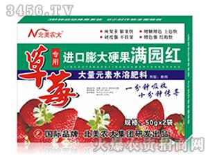 草莓专用进口膨大硬果满园红-北美农大