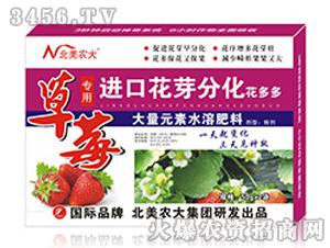 草莓专用进口花芽分化花多多-北美农大