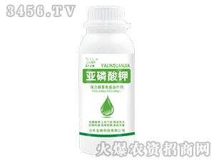 亚磷酸钾-白牛生物
