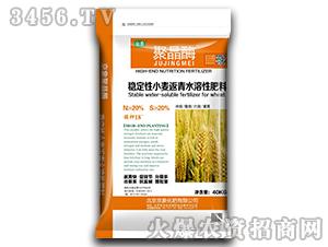 稳定性小麦返青水溶性肥料(N≥20%)-聚晶酶-京象