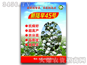 新陆早45号-棉花种子-恒创种业
