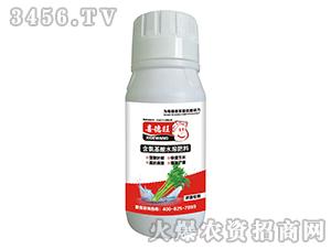 芹菜专用含氨基酸水溶肥料-喜德旺