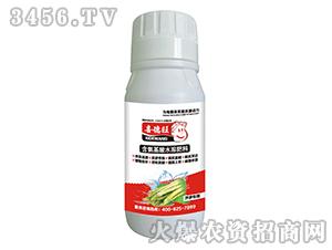 芦笋专用含氨基酸水溶肥料-喜德旺