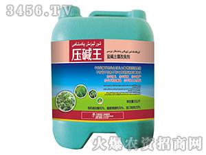 盐碱土壤改良剂-压碱王-中裕科技