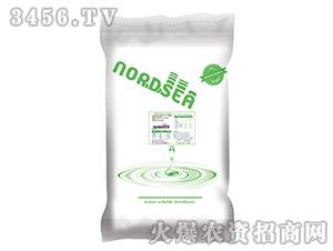 德国北海化学水溶肥肥20-20-20-九星惠农