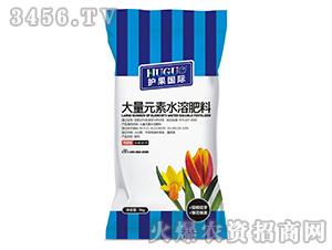 高磷型大量元素水溶肥料15-40-10+TE-护果国际