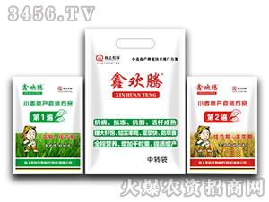 小麦高产套装方案-鑫欢腾-向上农科