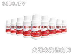 500g含腐植酸水溶肥料-加多旺-兴旺达
