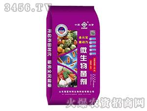 微生物菌剂(紫色包装)-金元宝菌状元-瑞富利特