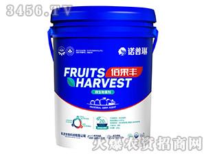 微生物菌剂-佰果丰-科沃生物