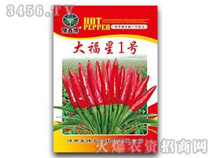 大福星1号-辣椒种子-鑫博农业