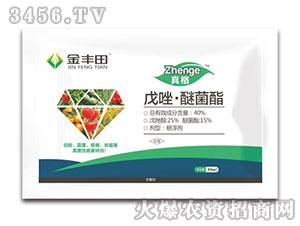 戊唑・醚菌酯悬浮剂-真格-金丰田