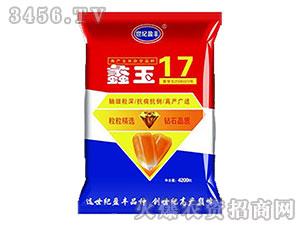 玉米杂交种-蠡玉17-田民源
