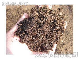纯羊粪有机肥(7)-源沃农业