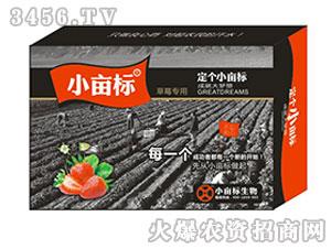 草莓专用叶面肥-小亩标