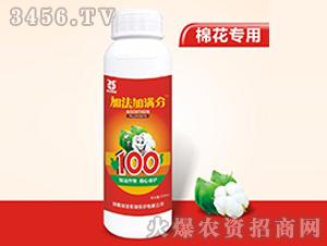 棉花专用叶面肥-加法加满分-加法作物