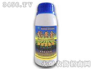 高聚合液态植物智能调控增产素-稻黄金-康奈尔
