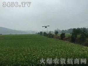 无人机4-奥翔飞鹰