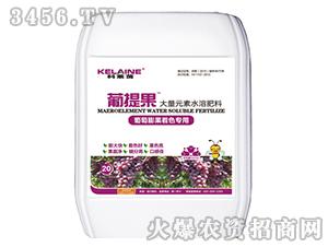 葡萄专用大量元素水溶肥