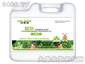 5kg叶菜专用含腐殖酸