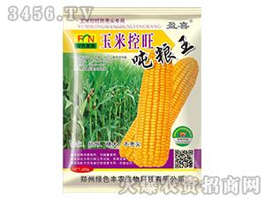 玉米控旺吨粮王-盈喜-绿色丰农