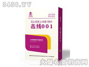 根结线虫特效药(盒)-击线001-龙灯生物
