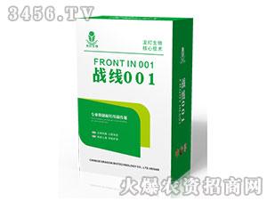 抑线酶活性剂(盒)-战线001-龙灯生物