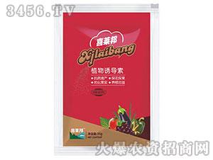 草莓类专用植物诱导素-喜莱邦