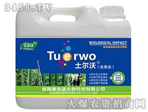 茄果类高浓缩海藻生物冲施肥-土尔沃-康宝盛