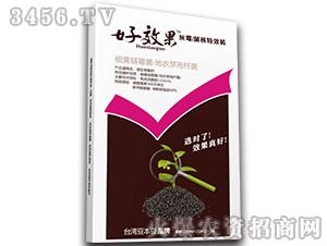 灰霉菌核特效杀菌剂-好效果-台湾豆本豆