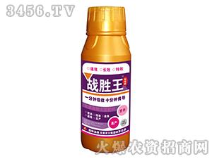 500g含腐植酸水溶肥