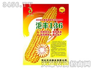 玉米新品种-汇丰136-��丰种业