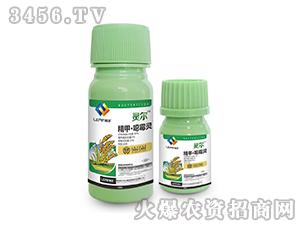 30%精甲・�f霉灵水剂