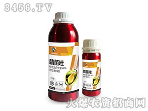 40%腈菌唑悬浮剂-利
